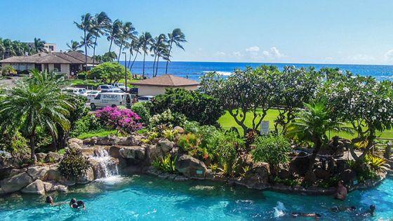 Results For Hawaii Diamond Resorts